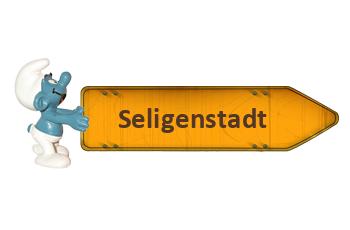Pflegestützpunkte in Seligenstadt